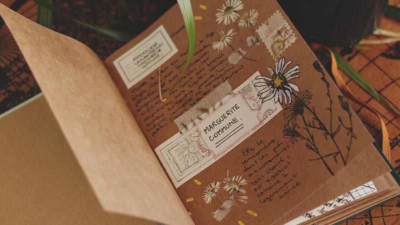 Carnet album artisanal herbier 04