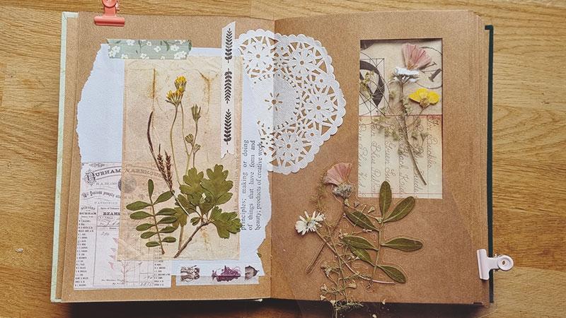Carnet album artisanal herbier 05